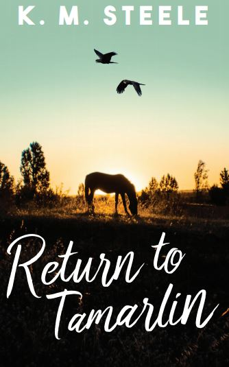 Front cover of Return to Tamarlin by K. M. Steele.